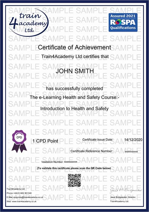 Health and Safety Certificate - Example